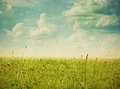 Green field and blue sky vintage nature background Stock Photos
