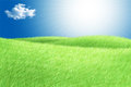 Green field blue sky white cloud and sun rays Royalty Free Stock Image