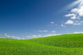 Green field and bue sky Stock Photography