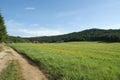 Green field mountain landscape Stock Photo