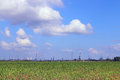 Green field and Oil Refinery with pipes Royalty Free Stock Photo