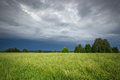 Green field and sky after a storm Royalty Free Stock Photo