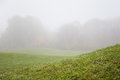 Green field in thick fog shallow depth of Royalty Free Stock Photography