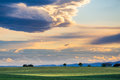 Green field with trees at sunset in Provence Royalty Free Stock Photo