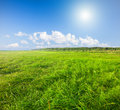 Green field under blue cloudy sky whit sun this is Stock Photos