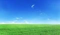 Green field under blue sky. Royalty Free Stock Photo