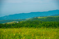 Green field under blue sky and the mountains Royalty Free Stock Photo