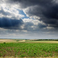 Green field under dramatic sky Royalty Free Stock Images