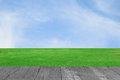 Green field and wood plant against blue sky Royalty Free Stock Photo