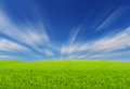 Green Fields with blue sky Royalty Free Stock Photo