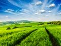 Green fields of moravia czech republic Royalty Free Stock Photo