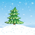 Green fir tree on slope winter holiday scene with over blue snowing background Stock Photos