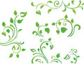 Green floral element Royalty Free Stock Photo