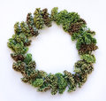 Green floral wreath frame on white background. Flat lay, top view, autumn or winter decoration Royalty Free Stock Photo