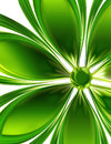 Green flower abstract on a white background Stock Photos
