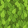 Green foliage summer seamless pattern many leaves Royalty Free Stock Image