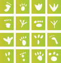 Green Foot Print Icons Royalty Free Stock Photos