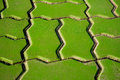 Green footway texture Royalty Free Stock Photo