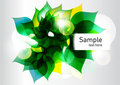 Green fresh abstract leaves background Stock Image