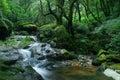 Green fresh cascade Royalty Free Stock Photos