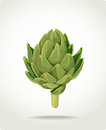 Green fresh useful eco-friendly artichoke Stock Image