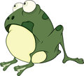 The green frog cartoon big with convex eyes Stock Photos