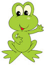 Green Frog (vector clip-art) Stock Photography