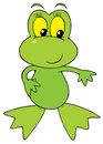 Green Frog (vector clip-art) Stock Image