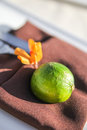 Green fruit on brown napkin Royalty Free Stock Photo