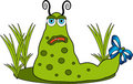 Green funny monster. Royalty Free Stock Photo