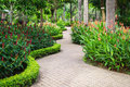 Green garden in the resort walkway among a Royalty Free Stock Photo