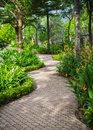 Green garden in the resort walkway among a Stock Photography