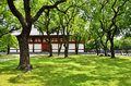Green garden of Toji temple, Kyoto Japan spring. Royalty Free Stock Photo