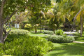 Green garden with walking pat Royalty Free Stock Photography