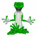 Green Gecko Meditating Stock Photos