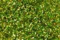 Green glitter texture on macro. Royalty Free Stock Photo