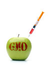 Green gmo apple with red acronym and inserted syringe containing red modifier shot on white Stock Photos