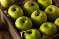 Green granny smith apple organic ready to eat Stock Photos