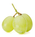 Green grape bunch Royalty Free Stock Photo