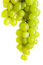 Green grape bunches of grapes isolated over white background Royalty Free Stock Photography