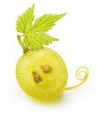 Green grape isolated Royalty Free Stock Photo