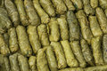 Green grape leaves stuffed rolls pattern Royalty Free Stock Photography