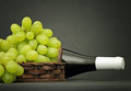 Green grapes in a basket and bottle of wine behind it on dark table Royalty Free Stock Photo