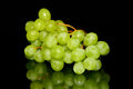 Green grapes on a reflective plate with black background Royalty Free Stock Photos