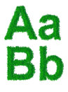 Green grass alphabet big and small letters a b Stock Images