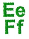 Green grass alphabet big and small letters e f Stock Image