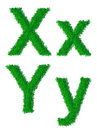 Green grass alphabet big and small letters x y Stock Image
