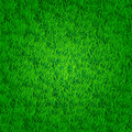 Green grass background with darkened edges isn t seamless Royalty Free Stock Photography