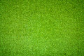 Green grass background natural of Royalty Free Stock Photography