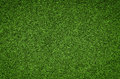 Green grass background texture, Artificial Grass Field Royalty Free Stock Photo
